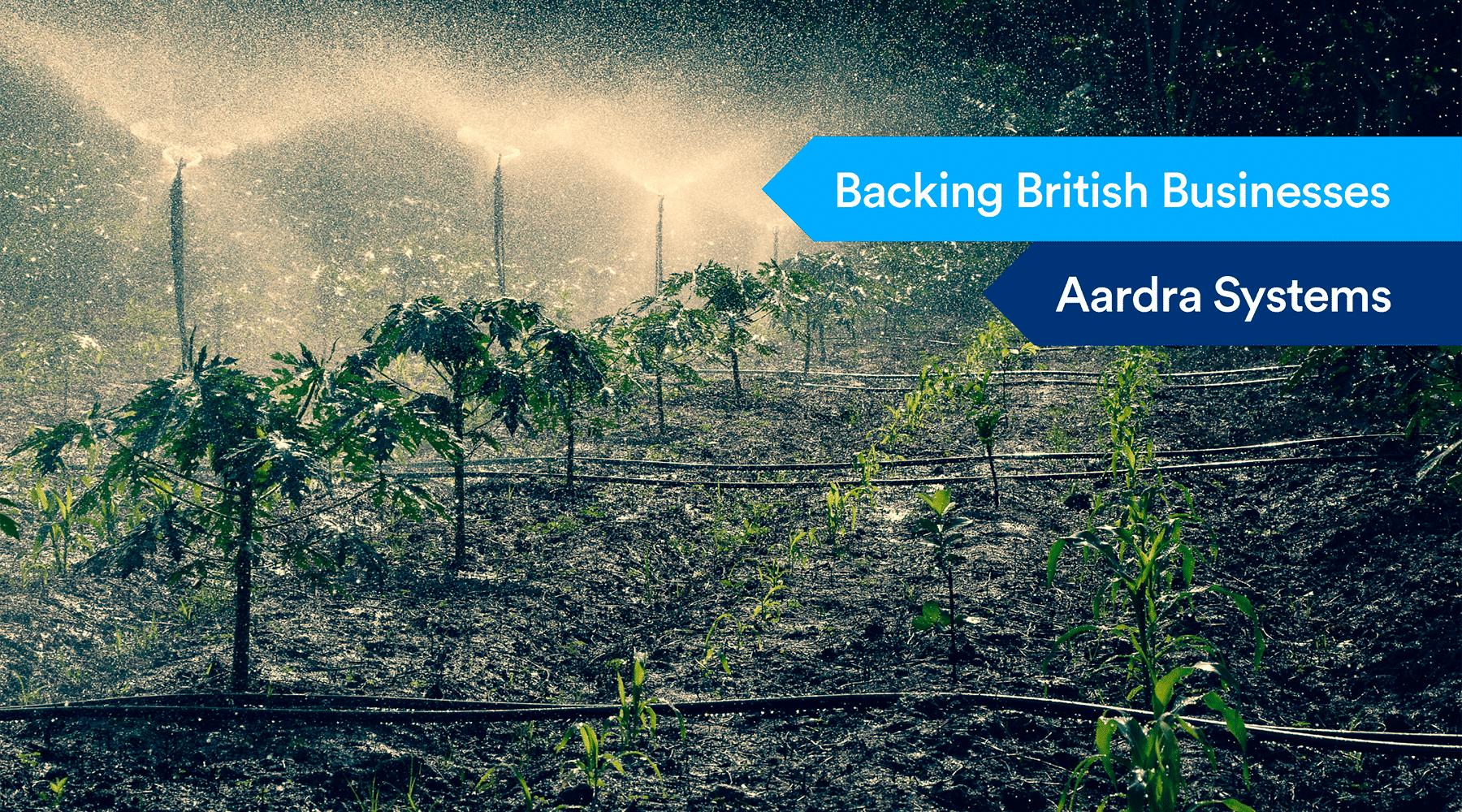 Aardra Systems - Backing British Businesses